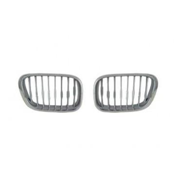 Grilles calandre BMW X5 E53 (chrome / argent)